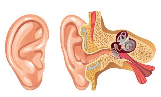Лекарство помогает вылечить воспаление среднего уха