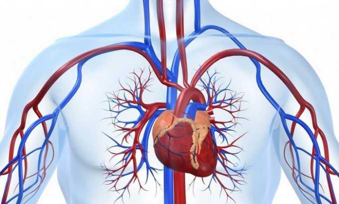 Розарт назначают для предупреждения сердечно-сосудистых болезней (включая выраженный варикоз)