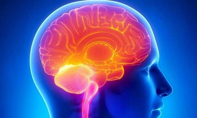 Препарат способствует активизации обменных процессов в клетках головного мозга