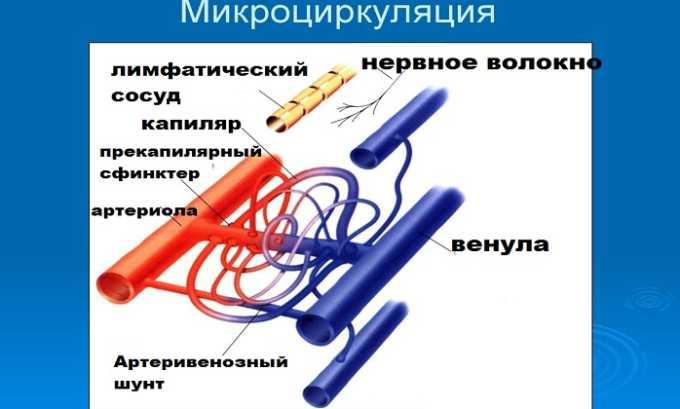 Курантил нормализует микроциркуляцию