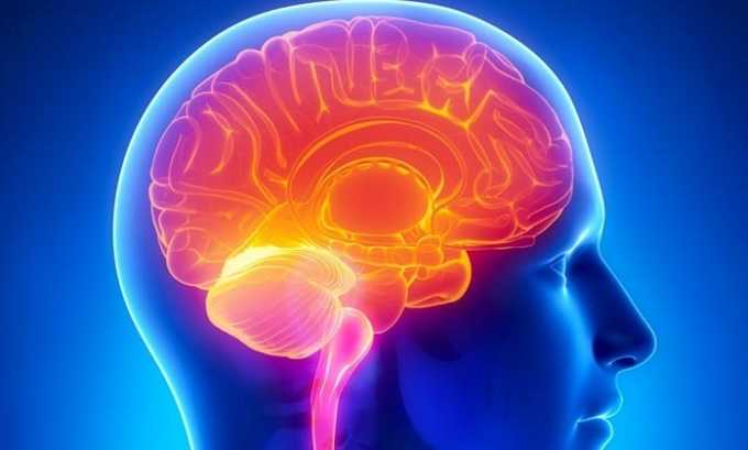 Ницерголин подавляет поддерживаемые серотонином реакции, способствующие сужению мозговых сосудов