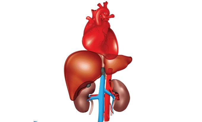 Необходимо соблюдать осторожность при назначении медикамента на фоне хронической сердечной, почечной или печеночной недостаточности