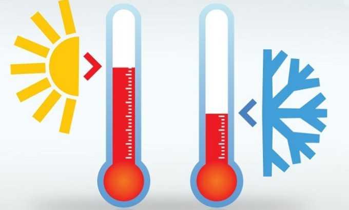Резкий контраст высоких и низких температур может вызвать купероз