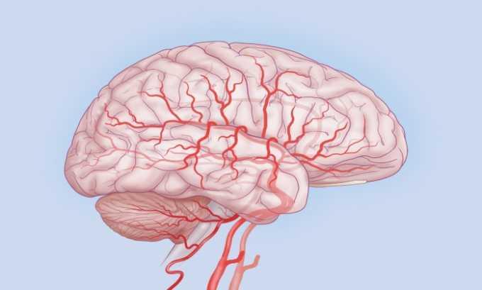 Препарат показан к приему при нарушении кровообращения в головном мозге