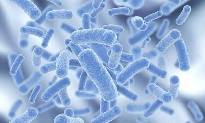 Диклоберл блокирует функцию размножения болезнетворных микроорганизмов