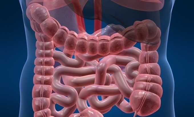 Индометацин активно всасывается слизистой кишечника