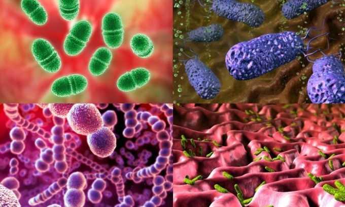 Однако нужно помнить, что Трихопол 250 неэффективен в отношении факультативных анаэробных бактерий