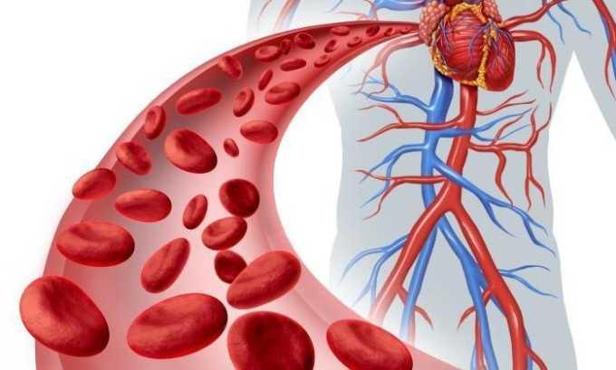 При пероральном употреблении Фенотропил быстро всасывается в кровь, распределяясь по всем органам и тканям