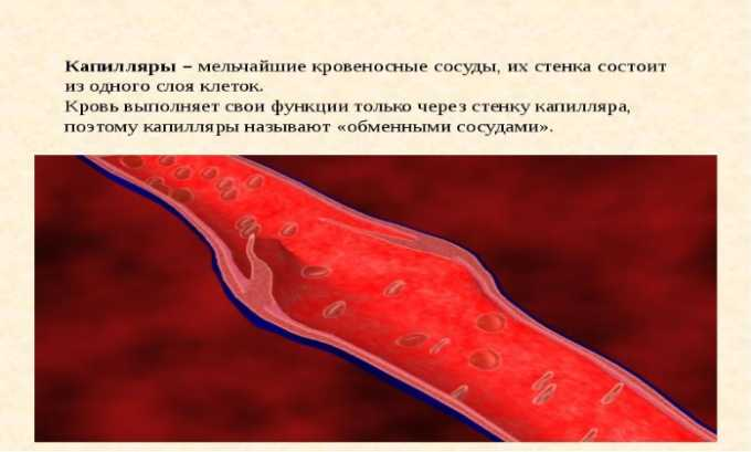 Гомеопатический препарат уменьшает проницаемость капилляров