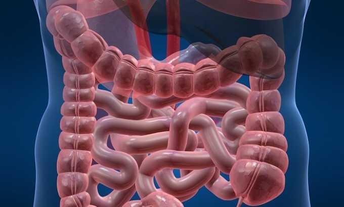 Прием препаратов с папином усиливает моторику кишечника