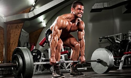 Варикоцеле подвержены люди, профессионально занимающиеся силовыми видами спорта
