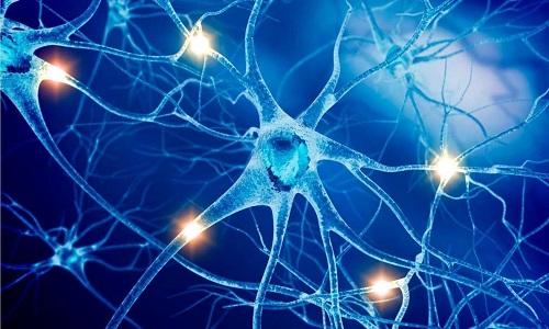 Действующие вещества препарата защищают нервную систему