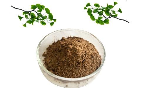 Активным ингредиентом лекарства Гинос выступает сухой экстракт листьев гинкго двулопастного
