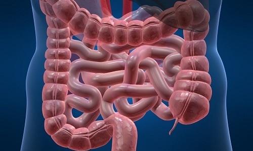 При пероральном приеме в стандартной дозировке средство активно всасывается слизистой оболочкой кишечника