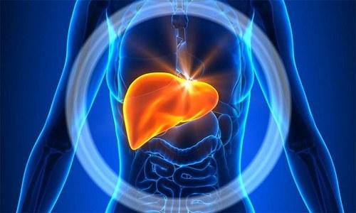 С различными заболеваниями печени препарат нужно принимать в случае крайней необходимости