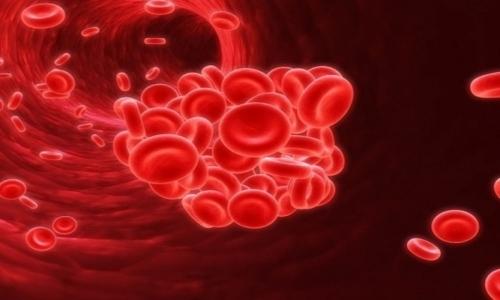 Гепарин, входящий в состав медикамента, уменьшает свертываемость крови и предупреждает образование тромбов