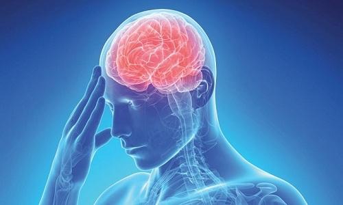 Витрум Мемори помогает активизировать кровообращение головного мозга