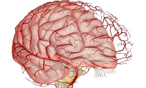 Препарат улучшает метаболизм и кровообращение в структурах головного мозга