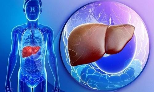 Действие препарата может влиять на функциональные биохимические показатели работы печени